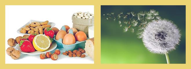 аллергия на цветы и продукты